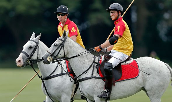 Prince Harry and Prince William will attend a charity polo match together next week Image GETTY