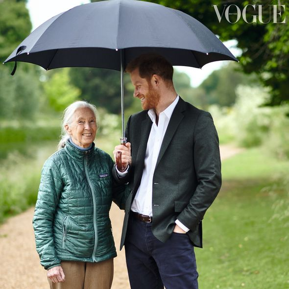 Prince Harry is interviewed by Jane Goodall in the September issue of Vogue Image Chris Allerton