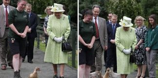 The Queen was upstaged by Olive the duck Image GETTY
