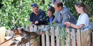 cropped The Countess of Wessex and Prince Edward take children Lady Louise and James to the zoo Photo C GETTY IMAGES