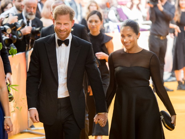 Prince Harry and Meghan Markle will head to Africa this autumn Photo C getty images