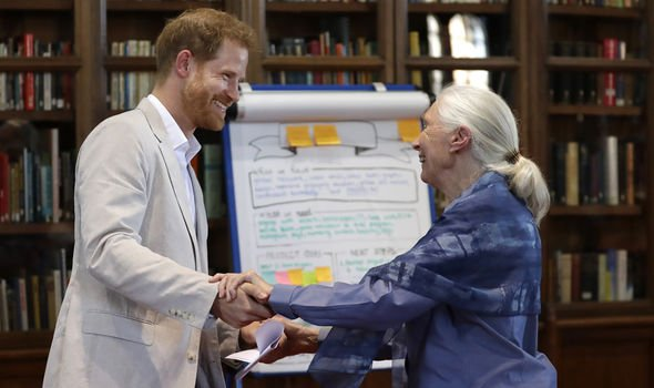 Prince Harry with interviewer Dr Jane Goodall Image GETTY
