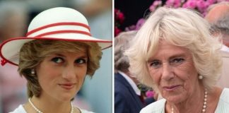 cropped According to one royal expert Camilla has never sought to replace Diana as a mother Image GETTY
