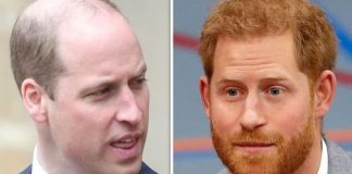 cropped Prince William claimed he would destroy Prince Harry in a fight Image GETTY