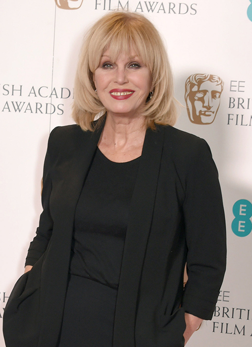 Joanna Lumley praised the Queen for her sustainable way of living Photo C GETTY IMAGES