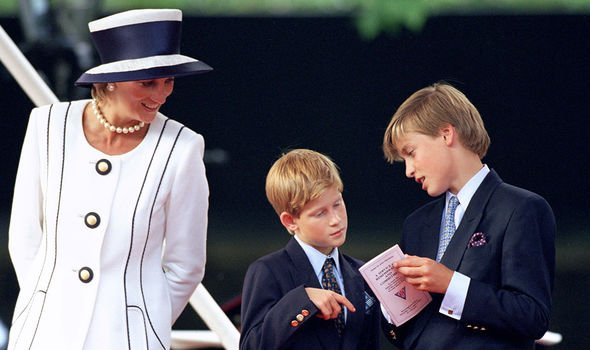 The US fell in love with Harry and William thanks to Diana Image GETTY