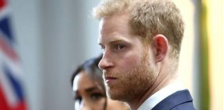 cropped Prince Harry was savaged in the attack by Ingrid Seward Image Getty Images