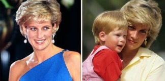 cropped Princess Diana shock Diana's secret nickname for Prince Harry revealed her true thoughts Image GETTY