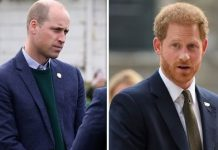 cropped The Duke of Cambridge and Duke of Sussex Image Getty
