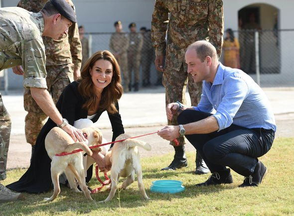 Kate Middleton snub The Duke and Duchess of Cambridge thrilled meeting puppies Image GETTY