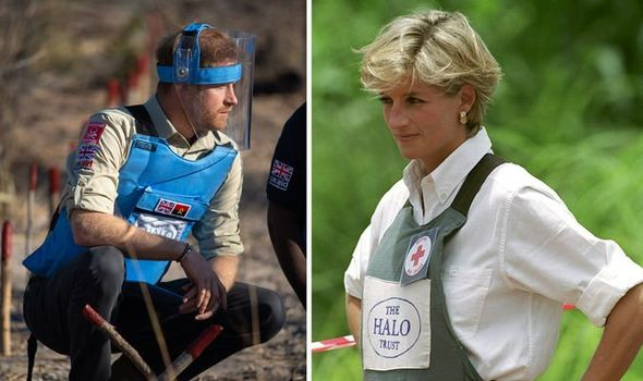 Prince Harry visited the same site as his mother Princess Diana did in Image Pool Samir Hussein WireImage Tim Graham Photo Library via Getty Images