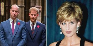Prince William Prince Harry and Princess Diana Image GETTY
