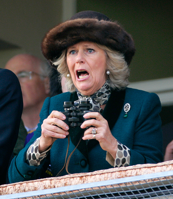 The Duchess of Cornwall Photo C GETTY IMAGES