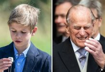 James Viscount Severn is fulfilling Prince Philip role