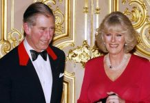 Prince Charles and Camillas engagement announcement in