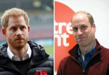 Prince Harry and Prince William Image GETTY