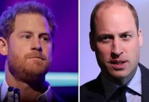Prince Williams future as a king puts a rock in his relationship with Harry Image GETTY