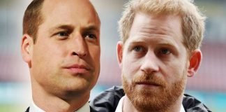 Royal aides brutal swipe at Harry and William revealed Crack on with your duties