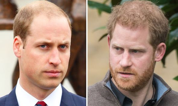 William explained frustrations of living with Prince Harry in Image GETTY