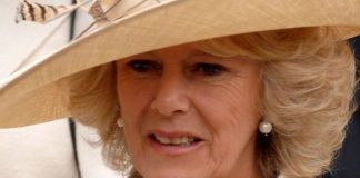 Camilla shock Duchess' son drops confession about his mum around Christmas 'Struggles' Image GETTY