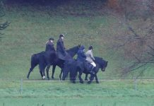 Prince Andrew news Prince Andrew was out for a horse ride today Image REUTERS