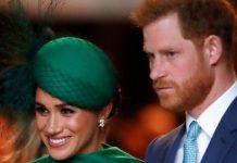 Prince Harry news
