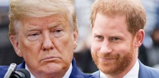 Prince Harry Trump