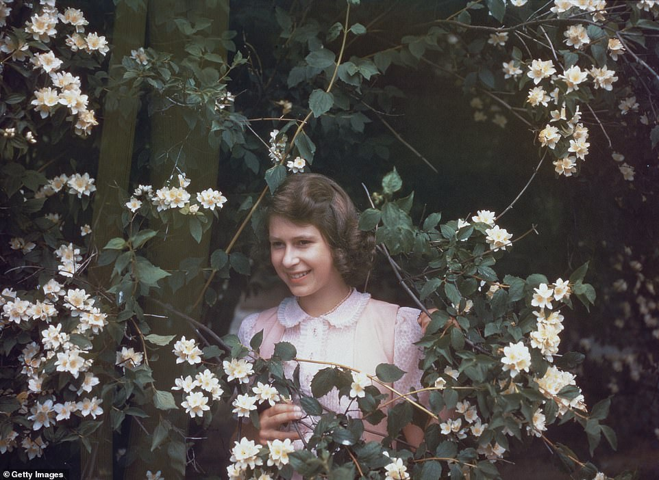 8th July 1941: Princess Elizabeth is pictured amongst a syringa bush in the grounds of Windsor Castle, Berkshire at the age of 15