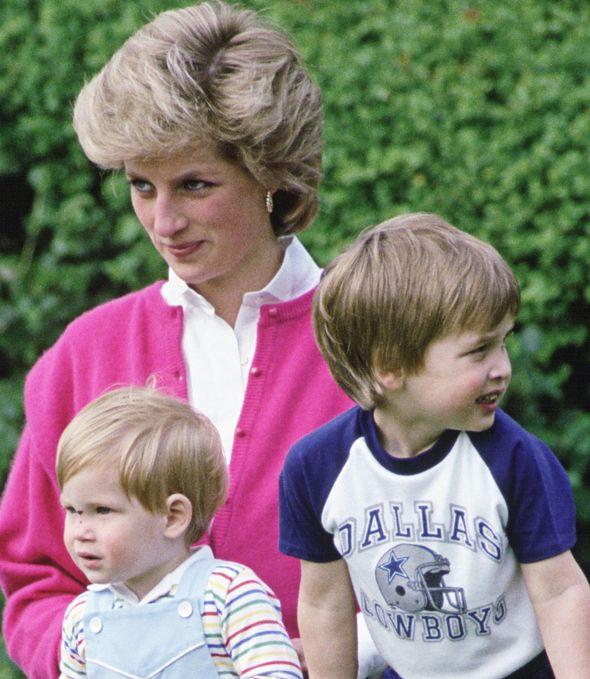 Princess Diana, Prince William and Harry