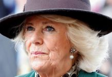 Royal heartbreak: How 'Camilla knew everything happening in Charles-Diana marriage'