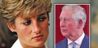 prince charles news william harry diana death