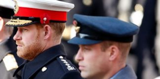 Prince William 'advised' Harry and Meghan to return to the UK or somewhere 'safer'