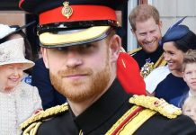 'Prince Harry and Meghan Markle' spotted Christmas shopping… in budget store - Dianalegacy ...