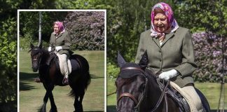The Queen has been pictured for the first time since lockdown