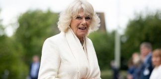 A picture of Camilla Duchess of Cornwall has finally won Britain and America's heart
