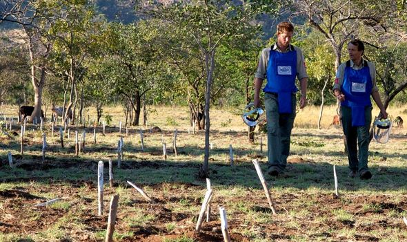 Prince Harry tribute: Prince Harry visiting a landmine site