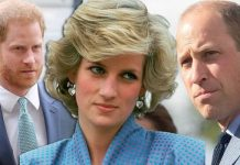 Princess Diana heartbreak: Royals