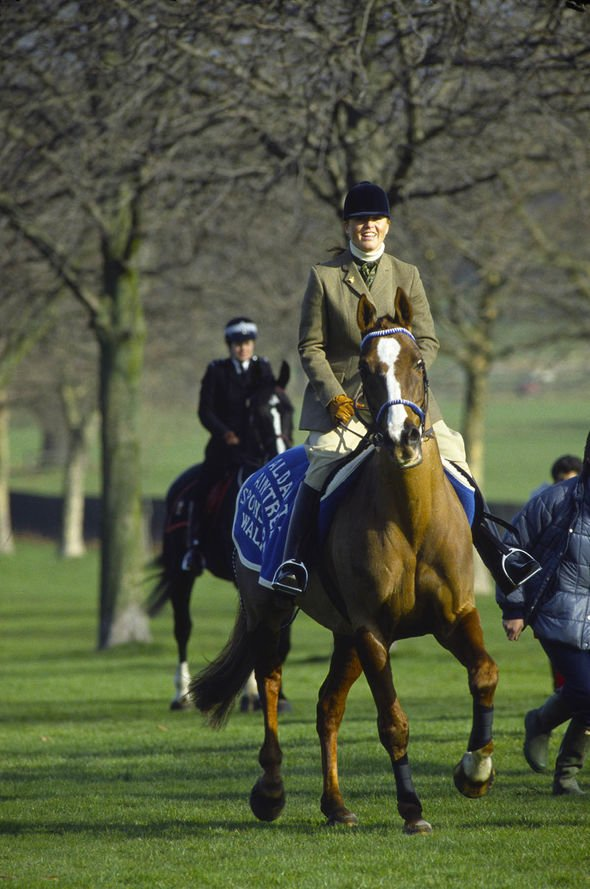 sarah ferguson news duchess of york tv show dancing with horses the queen fergie youtube