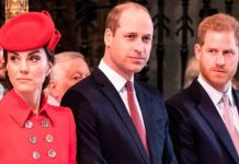 kate middleton prince william prince harry news