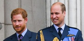 Prince Harry news: Royal sources say Prince William 'feud' must end to save monarchy