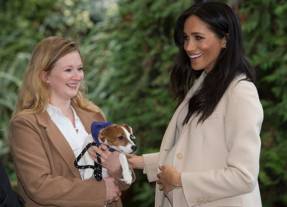 Pregnant Meghan Markle with a dog