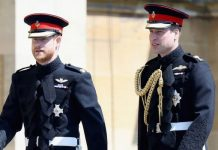 Prince William news: Prince Harry and Prince William at the Sussexes wedding in 2018