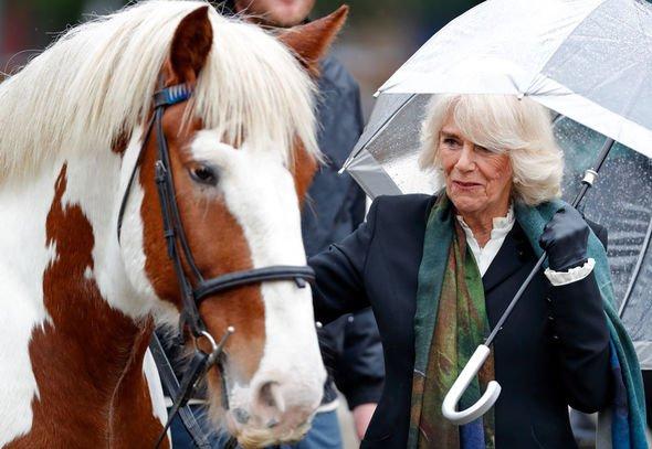 Queen' Camilla