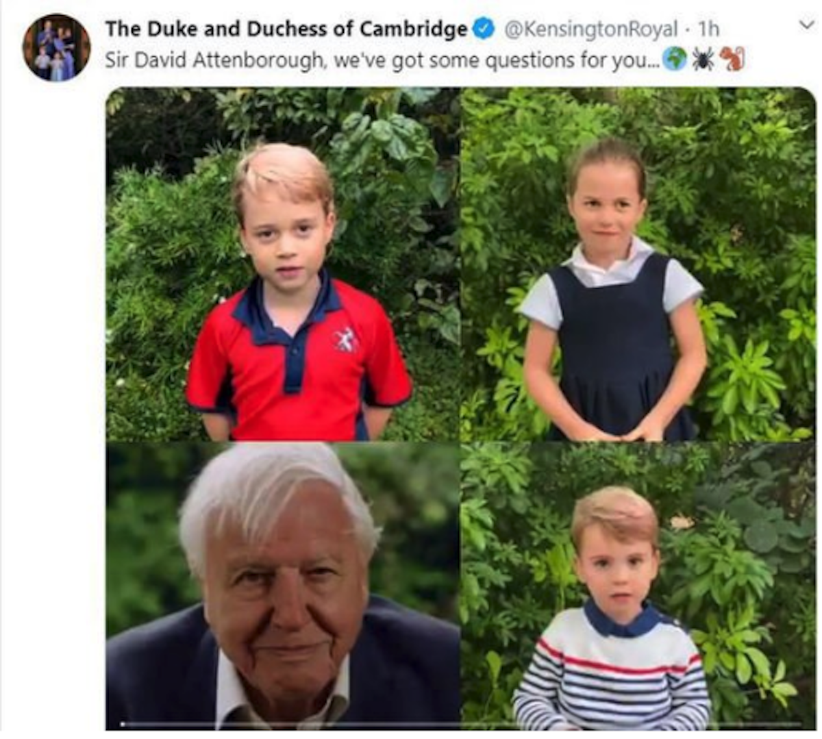 princess charlotte prince george prince louis video