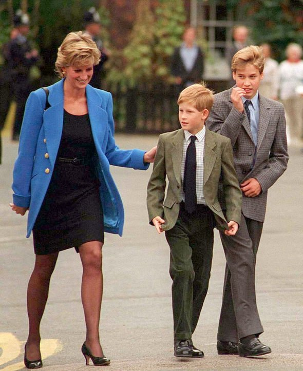 Royal Family: Princess Diana, Prince Harry and Prince William