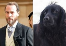 James Middleton Lupo