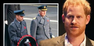 Prince Harry's Remembrance Day snub proves he is 'keen on reconciliation' with Royals
