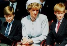 princess diana news prince william prince harry latest