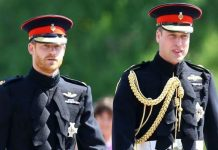 royals prince william prince harry