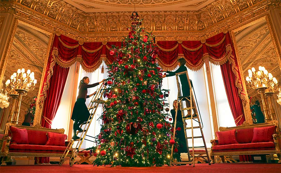 the queen home christmas tree z